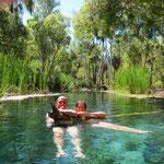 33° warmes Wasser in den Bitter Springs