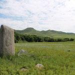 ...Dearstones... Renntiersteine gibt es überall in der Mongolei