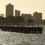 Ganz viel Wasser und noch mehr Grün machen Perth zu einer BIldhübschen Stadt