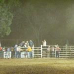 Echtes Rodeo