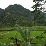 ...Irgendwo in den Bergen von Nord-West-Bali