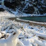 Treibholz am Eismeer