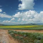 Traumweiten in der Zentralmongolei