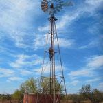 Windmühlenreperatur auf Wyloo Station