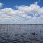 Kondinin See... nur voll nach Regen, so etwa alle 8 Jahre