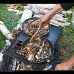 Frische Pilze aus den Wäldern Sibiriens
