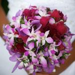 Pololena: Blossoming