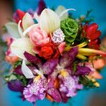 Kaipua: Ocean flower