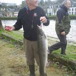 saumon 2011