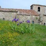 Rochefort - Eglise du XII° siècle