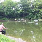 1-1-3.山崎公園の池