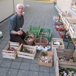 Einer unserer besten Pilzkenner sortiert die Pilze.
