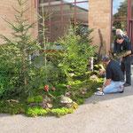 Schön dekorierter Eingang zur Pilzausstellung!