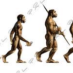 Ipren, Intelligensens utveckling genom historien, Pharmacia, Garbergs