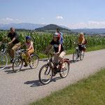 Biken im Attergau