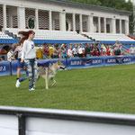 Вульф в Смоленске закрыл Юного Чемпиона России.
