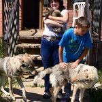 Вольграф со своей семьей. Вольф и Асти, семейное фото :)