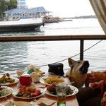 Асти на Юге Кушает в ресторанах:) Лето 2011г.