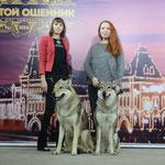 Вульф и Бесси Чемпионы Породы 2016г.