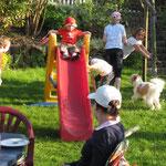 Action im Garten
