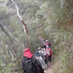 ハイキングに出発です