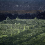 """""""L 1"""" aus der Reihe Bosnian Nightmare, 2000/2012 Hochdruck über Photocopy-Transfer"""