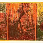 destruction 2016, Holz- und Linolschnitt über Phototransfer 35 x 78 cm