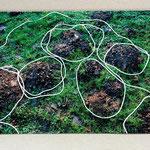 follow the line, 2012, Motiv Maulwurfshügel, Foto 13 x 18 cm auf Holzplatte