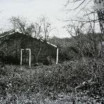 Community, 2009 Pinselzeichnung auf Fotografie