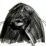 Bosnische Skizzen 1999-2001, Graphit auf Papier