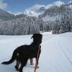 Lina in der Schweiz, 2008