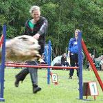 Kiwi beim Jumping - sowohl zu schnell für mich als auch für die Kamera...