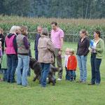 10. September: Vorstandssitzung des 1. WCD in Ostbevern. Am Wochenende folgen Züchterseminar und Zuchtzulassungsprüfung.