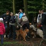 Versuch eines Gruppenfotos im Wald