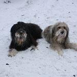Bruder Lupo und Jeannie, Dezember 2010