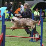 Kiwi beim A1-Lauf