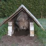 Im Garten gräbt sie drei Höhlen
