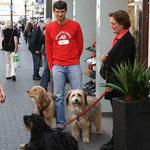 Unsere Landeier-Hunde in der Bonner Innenstadt!