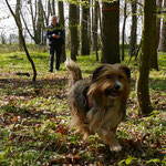 Hundeführer Andreas folgt