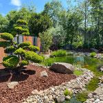 Gartenbonsai verpflanzt in einem Kundengarten in Würzburg