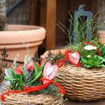 Geschenkideen und Dekorationen Blumen kaufen Würzburg