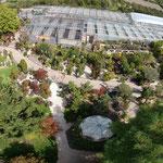 unsere  große Gartenbaumschule von oben