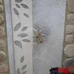 Fontaine murale esprit feuille inspiré de google image