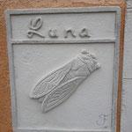 Nom de la maison et cigale sculptés à l'entrée de la maison