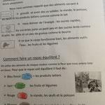 Atelier manger équilibré Maternelle MS et GS