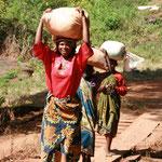 Frauen tragen Mais (je ca.25-30 kg) zur Mühle von Kindimba
