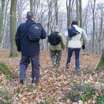 Mit dem Team durch die Wälder ziehen