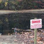 auf einem Platz in USA gesehen - die Schilder waren an jedem Teich