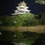 Night view of Hiroshima castle