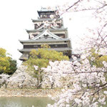 Hiroshima castle with Sakura